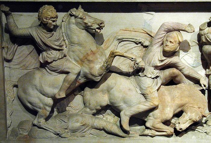 Aleksanteri taisteli itse usein toveriratsuväen mukana. Tässä Aleksanteri sargofagista peräisin olevassa kuvassa hänet nähdään taistelussa persialaisia vastaan.